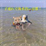 子連れで海水浴in京都!オススメのスポットと初心者が選んだ海水浴場