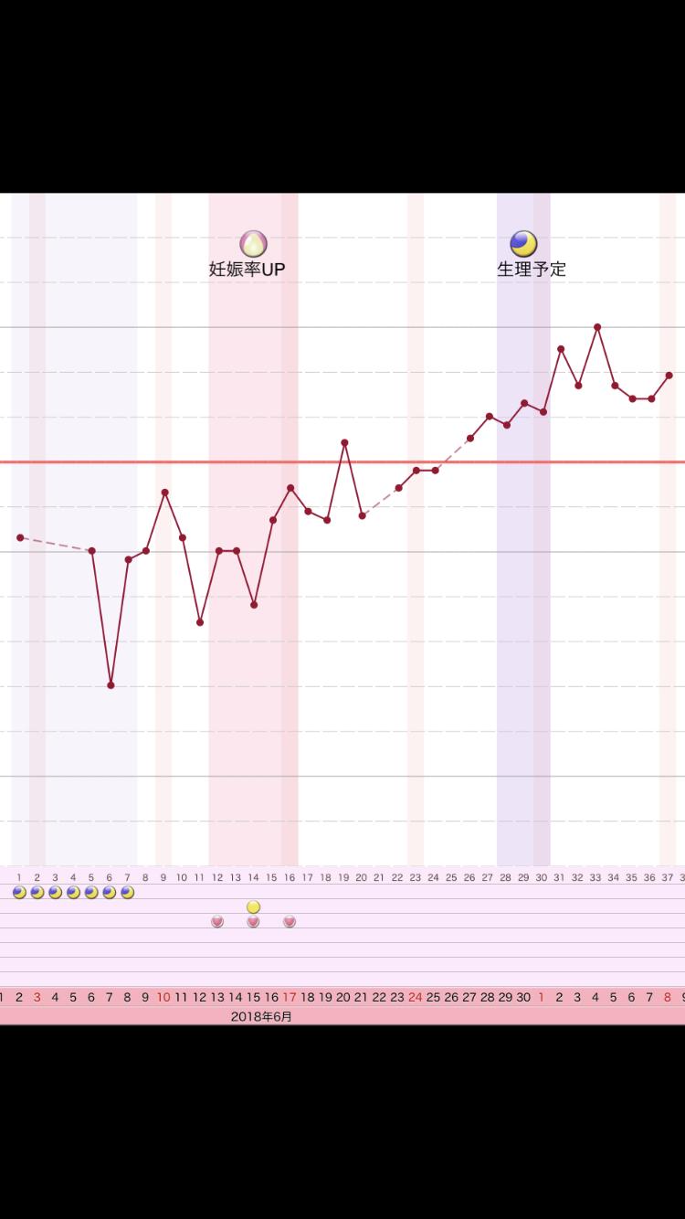 妊娠初期 日中の体温