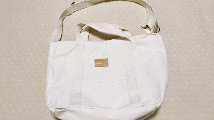 3coinsでキャンバスバッグ550円を購入*マザーズバッグとして使える?